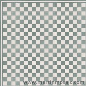 Micro 13